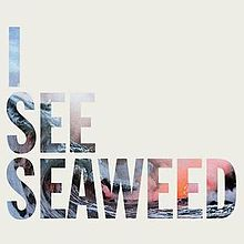 I See Seaweed by The Drones